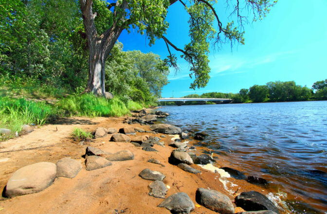 sandy river shore with rocks and large tree, bridge in distance