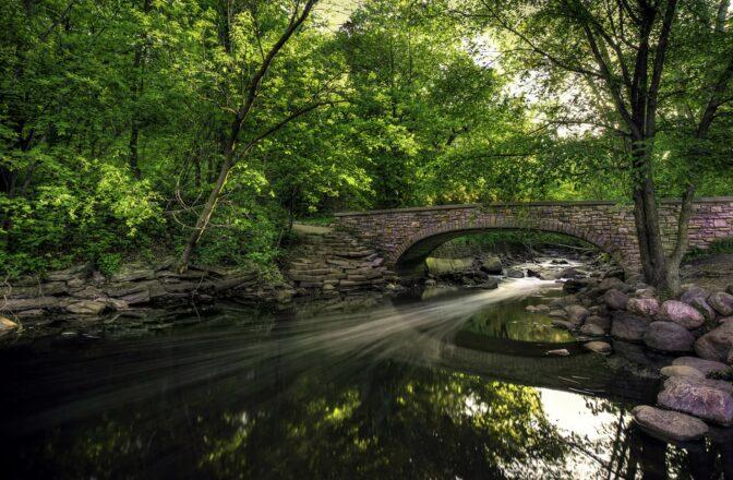 stone foot bridge over stream under tree canopy