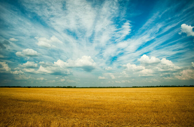 open sky with harvested field