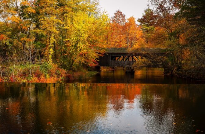 River with a bridge in autumn.